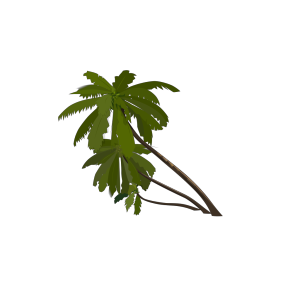 Sc Palmetto Tree icon png