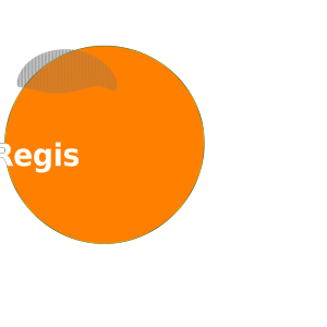 Orange Button Register Here Lg icon png