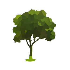 Black Tree icon png