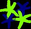 Starfish Prints 4 icon png