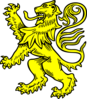 Lion 20 icon png