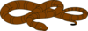 Snake icon png