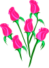 Roses Border icon png