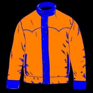 Blue Orange Coat