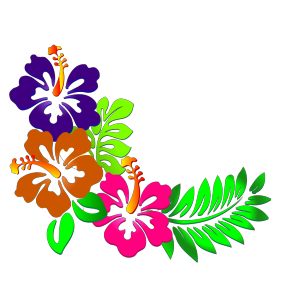 Hibiscus Corner icon png