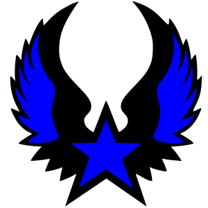 Black Star Gold Backround icon png