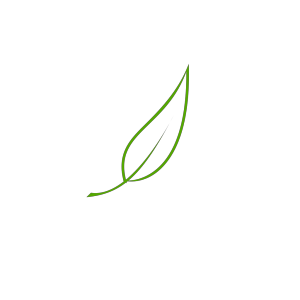 Leaf icon png
