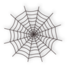 Spider Web icon png