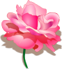 Rose 2 icon png