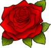 Rose 4 icon png