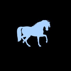 Horseback icon png