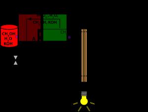 Prokarytoci Cell icon png