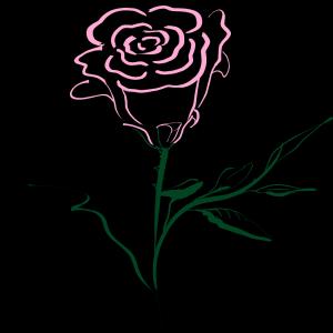 Pink Rose icon png