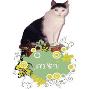 Cat icon png