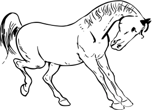 Blue Horse icon png