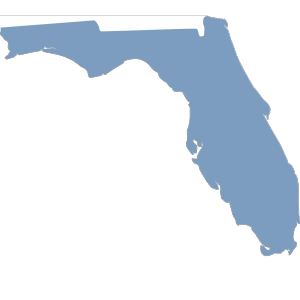 Blue Florida icon png