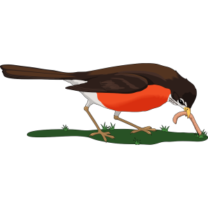 Bird Eating Worm icon png