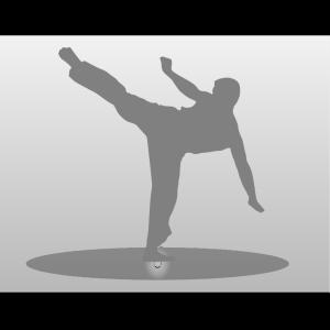 Karate Kick icon png