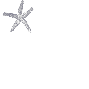 Dark Blue Starfish icon png