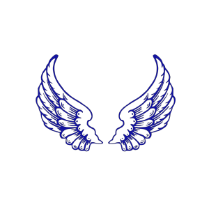 Falcon Wings icon png