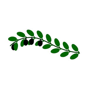 Olive Branch Blue Birds icon png