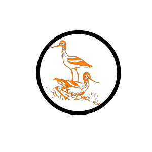 Flock Of Birds icon png