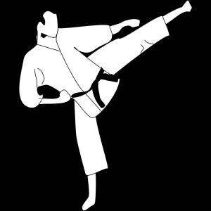 Karate Kick Silhouette icon png