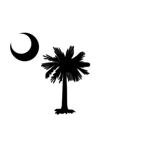 Carolina Blue Palmetto Tree icon png
