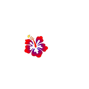 Hibiscus Edit By Vaa icon png