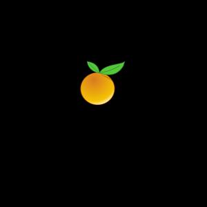 Orange Slice icon png