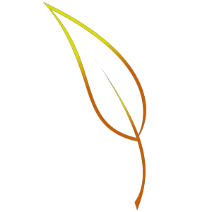 Leaf Lineart icon png