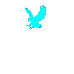 Eagle Bird 25 icon png