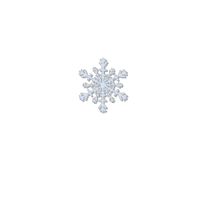 Snow Flake icon png