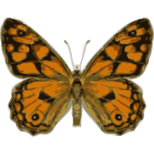 Butterfly icon png