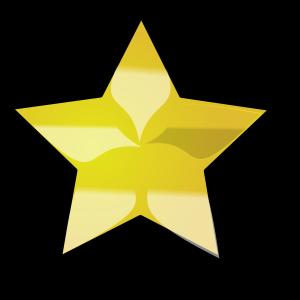 Navy Blue Star Emblem icon png
