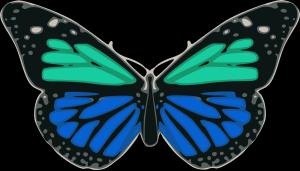 Ecg Blu icon png
