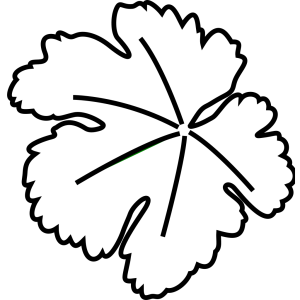 Leaf Border icon png