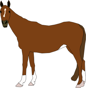 Horse icon png
