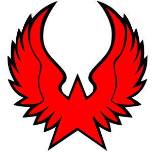 Ninja Star icon png