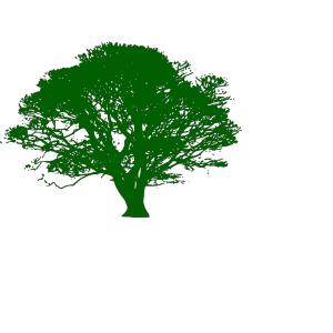 Brown And Green Tree Branch icon png