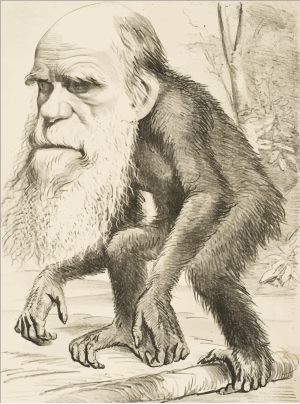 Brown Ape icon png