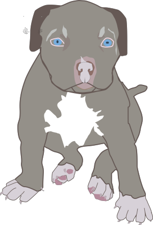 Brown Bull Terrier icon png