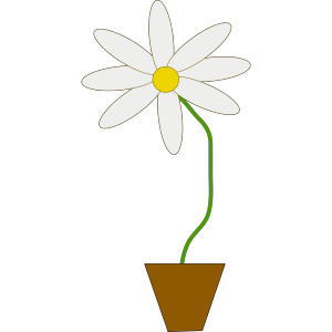Flower In A Pot icon png