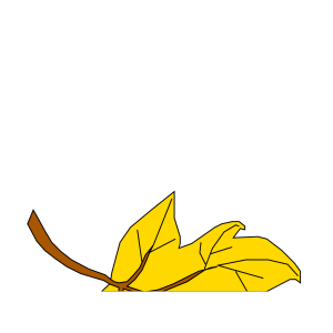 Fall Leaf icon png
