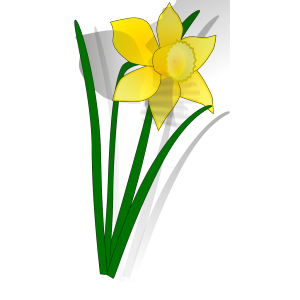 Daffodil flower icon png