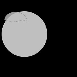 Grey Circle icon png