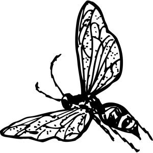 Flying Wasp 2 icon png