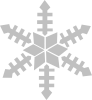 Snowfalke icon png