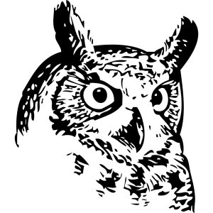 Great Owl icon png