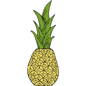 Pineapple Head icon png